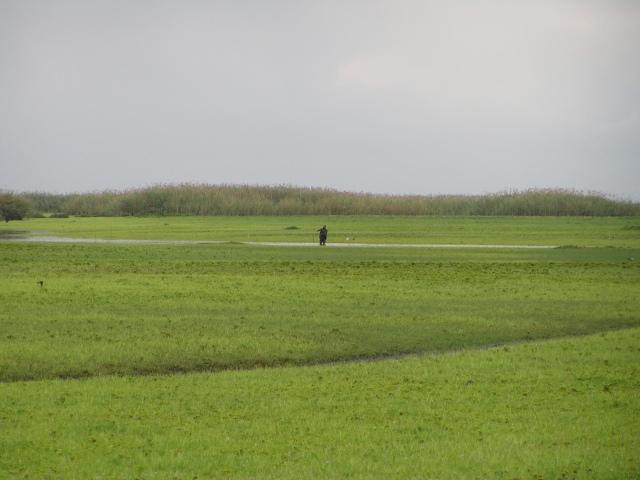 BaTwa fisherman, maybe