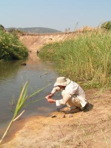 Anthro-man also washing - stone tools