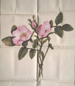 Charlotte's roses on a new tea towel