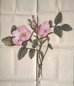 Charlotte's roses on a new tea towel