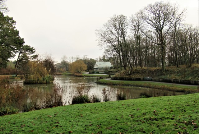 View from the bench in one of our local parks on a rather drab winter's day